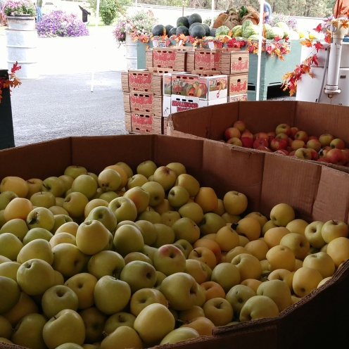 Bushel of Apples